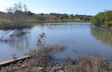 חשיפה ראשונה לאגם הדרומי בראשון לציון