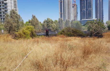 שריפת קוצים בשטח פארק המנגלים ברח בן גוריון