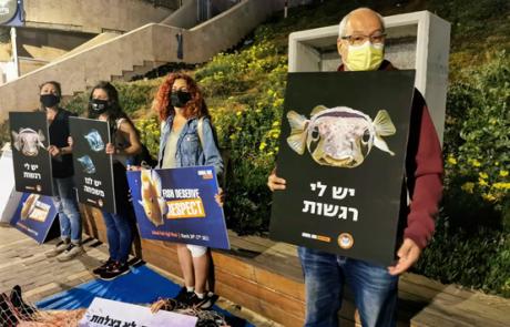 פעילי ארגוני זכויות בעלי חיים במייצג כנגד תעשיית